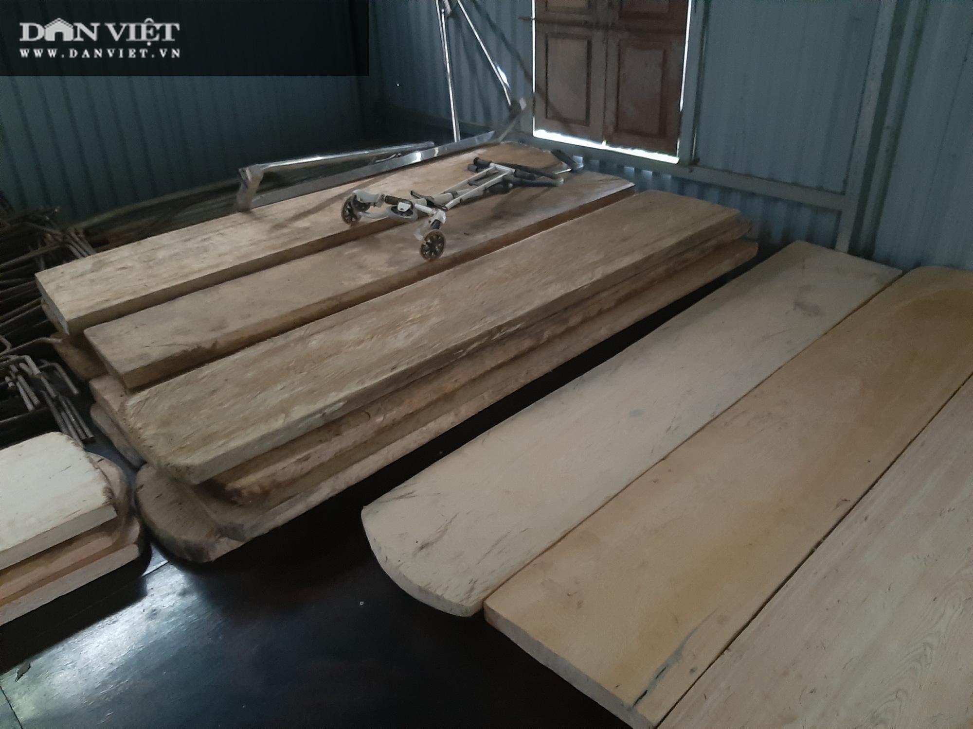 """Phá rừng pơ mu VQG Hoàng Liên (Bài 4): Phá rừng cho """"trùm buôn gỗ"""", chứ không phải để đóng quan tài! - Ảnh 4."""