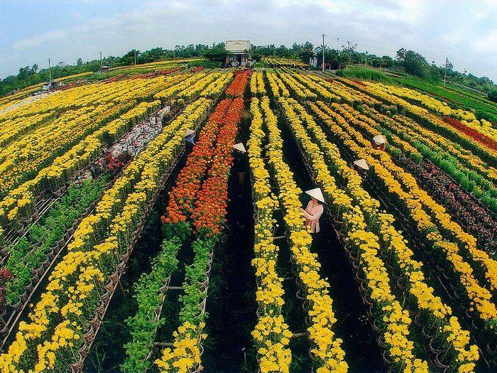 3 đối tượng được miễn thuế đất nông nghiệp mới nhất - Ảnh 1.