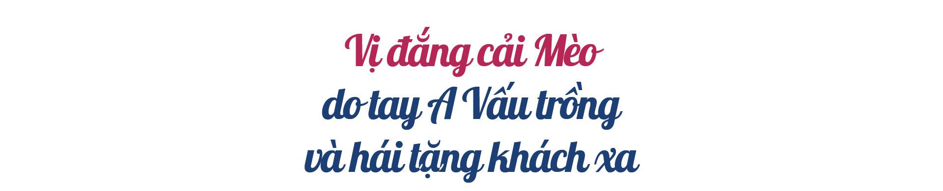 """Dân Việt trò chuyện:Khà A Vấu - vinh danh """"Thiên đường mây"""" trên """"Miền đất lửa"""" - Ảnh 15."""
