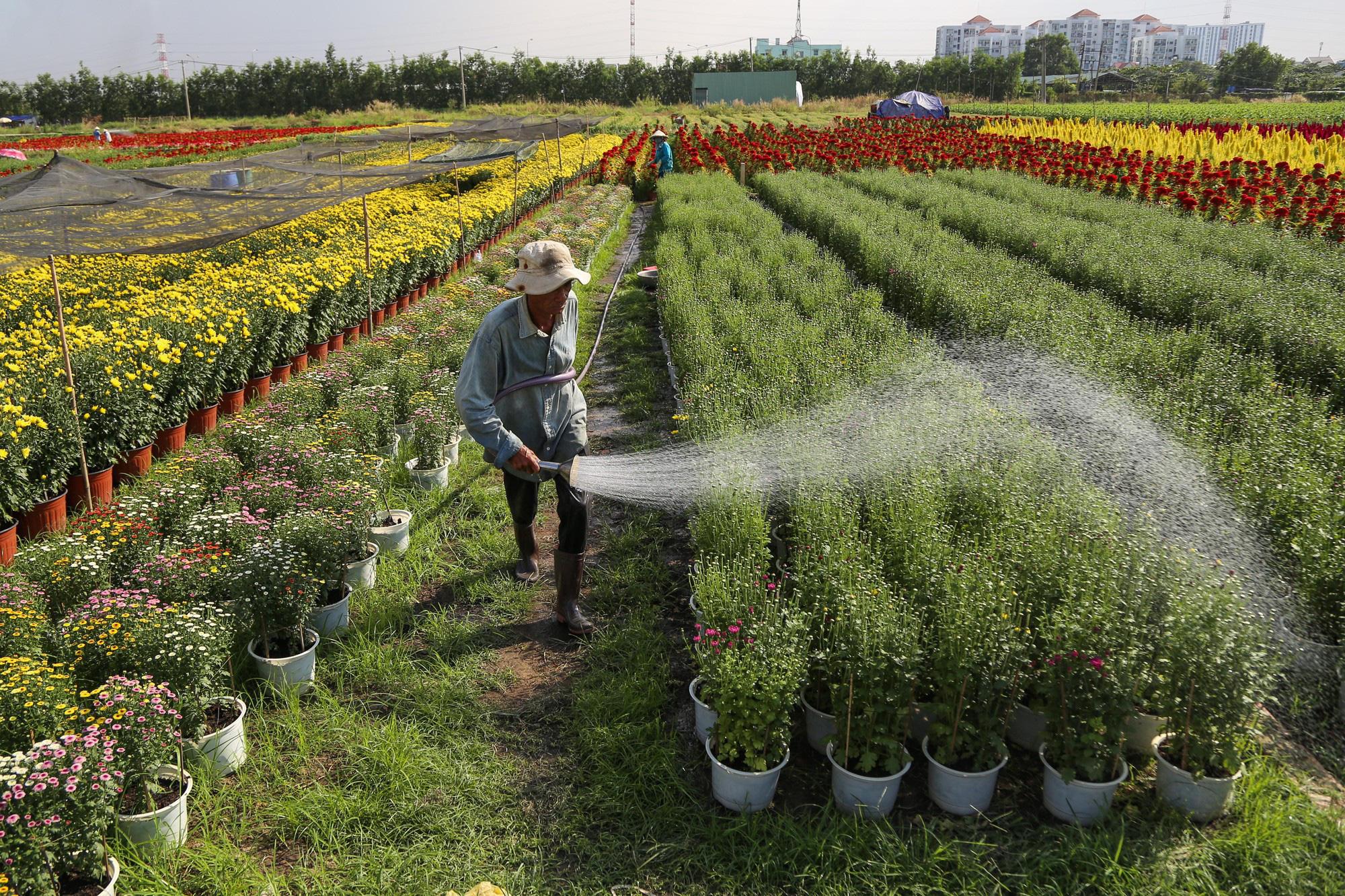Cách tính tiền sử dụng đất khi chuyển từ đất nông nghiệp sang đất thổ cư - Ảnh 1.