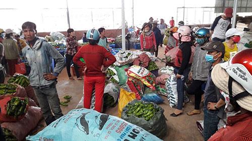 Chuyện lạ Bình Thuận: Cắt hoa thanh long bán giá ngang ngửa với bán trái, hoa thanh long biến thành món hoa bá vương - Ảnh 1.