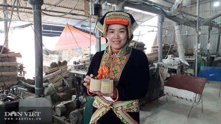 Thái Nguyên: Từ hộ khó khăn cặp vợ chồng người Dao giúp nhiều bà con trong vùng thoát nghèo - Ảnh 4.