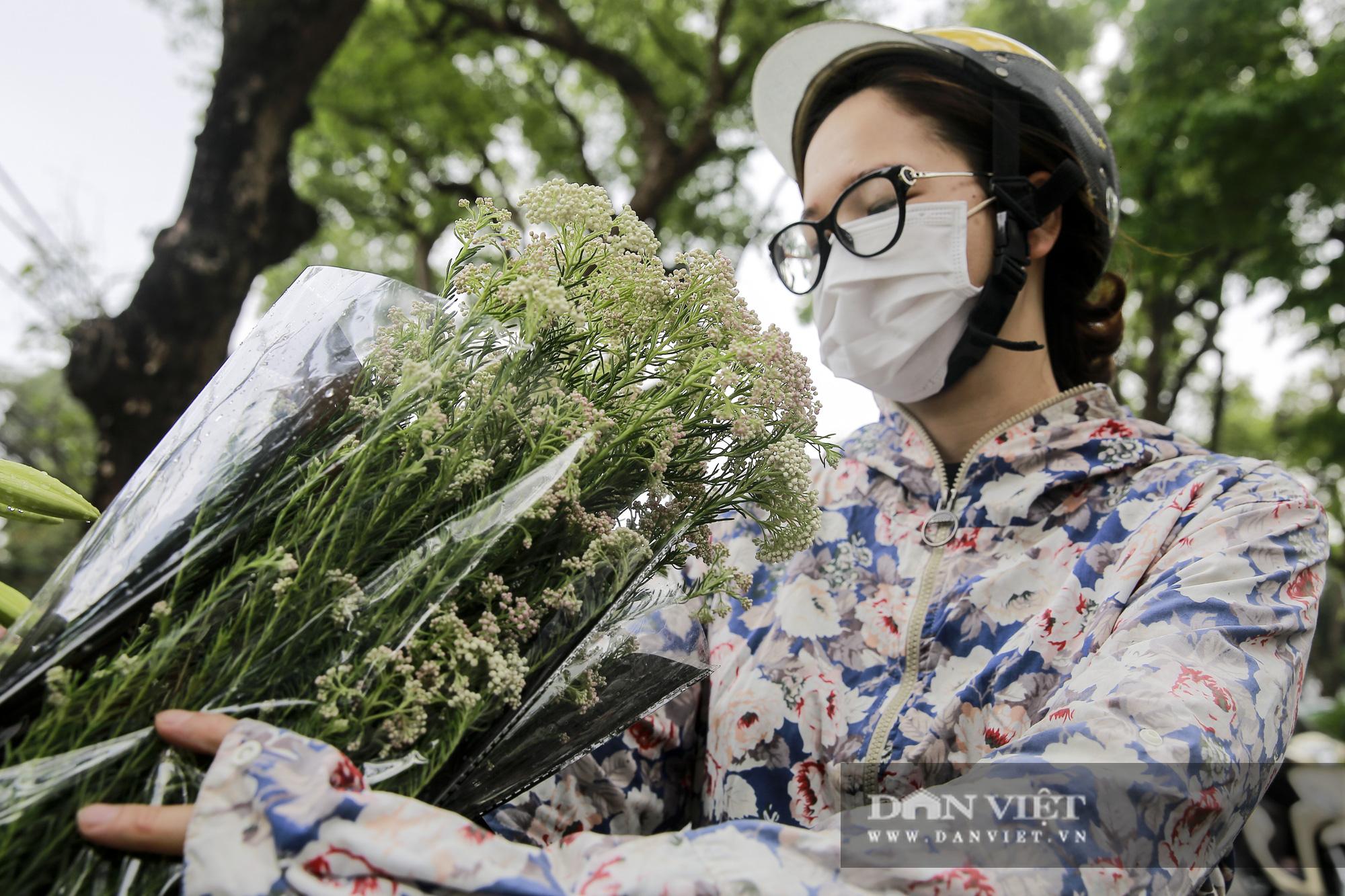 Người Hà Nội phát sốt với loài hoa nhập ngoại mới - Ảnh 5.