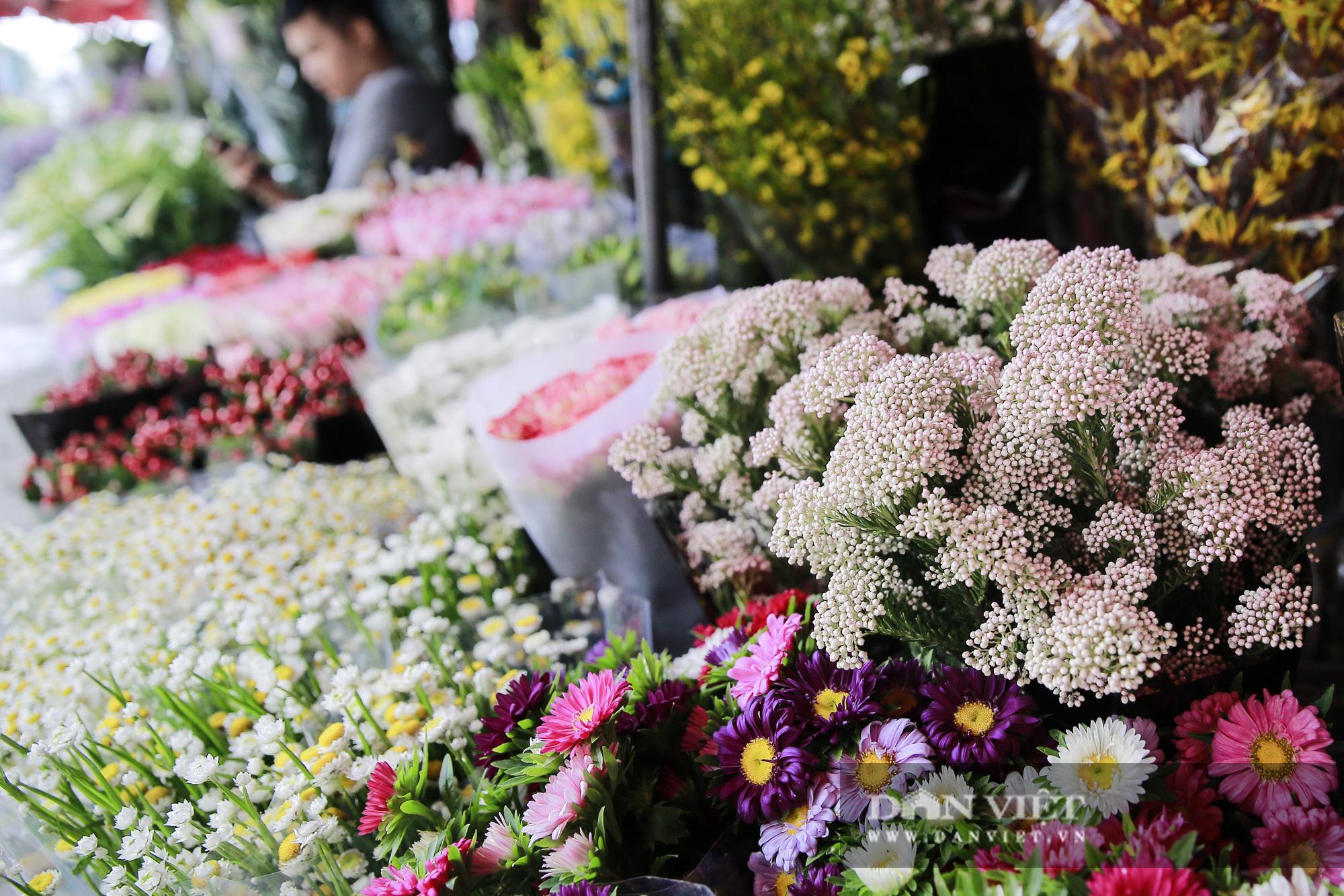 Người Hà Nội phát sốt với loài hoa nhập ngoại mới - Ảnh 6.