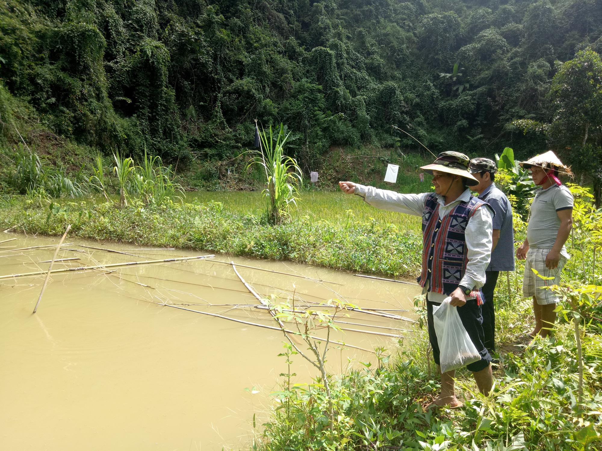 """Quảng Nam: Vốn tín dụng chính sách """"tiếp sức"""" cho người dân thoát nghèo - Ảnh 1."""