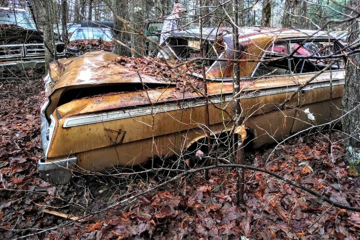 Chevrolet Impala SS Golden Anniversary 1962 cực hiếm tìm thấy trong bụi cây bỏ hoang - Ảnh 2.