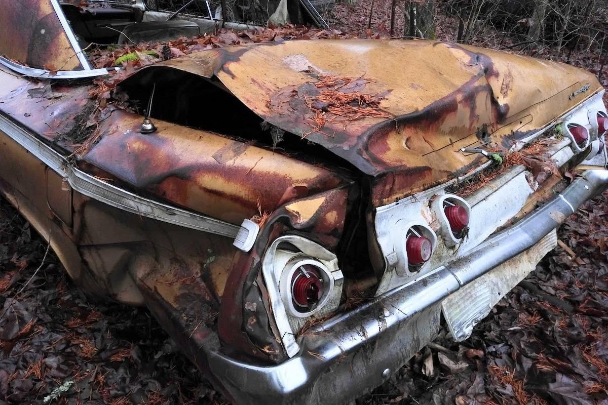 Chevrolet Impala SS Golden Anniversary 1962 cực hiếm tìm thấy trong bụi cây bỏ hoang - Ảnh 1.