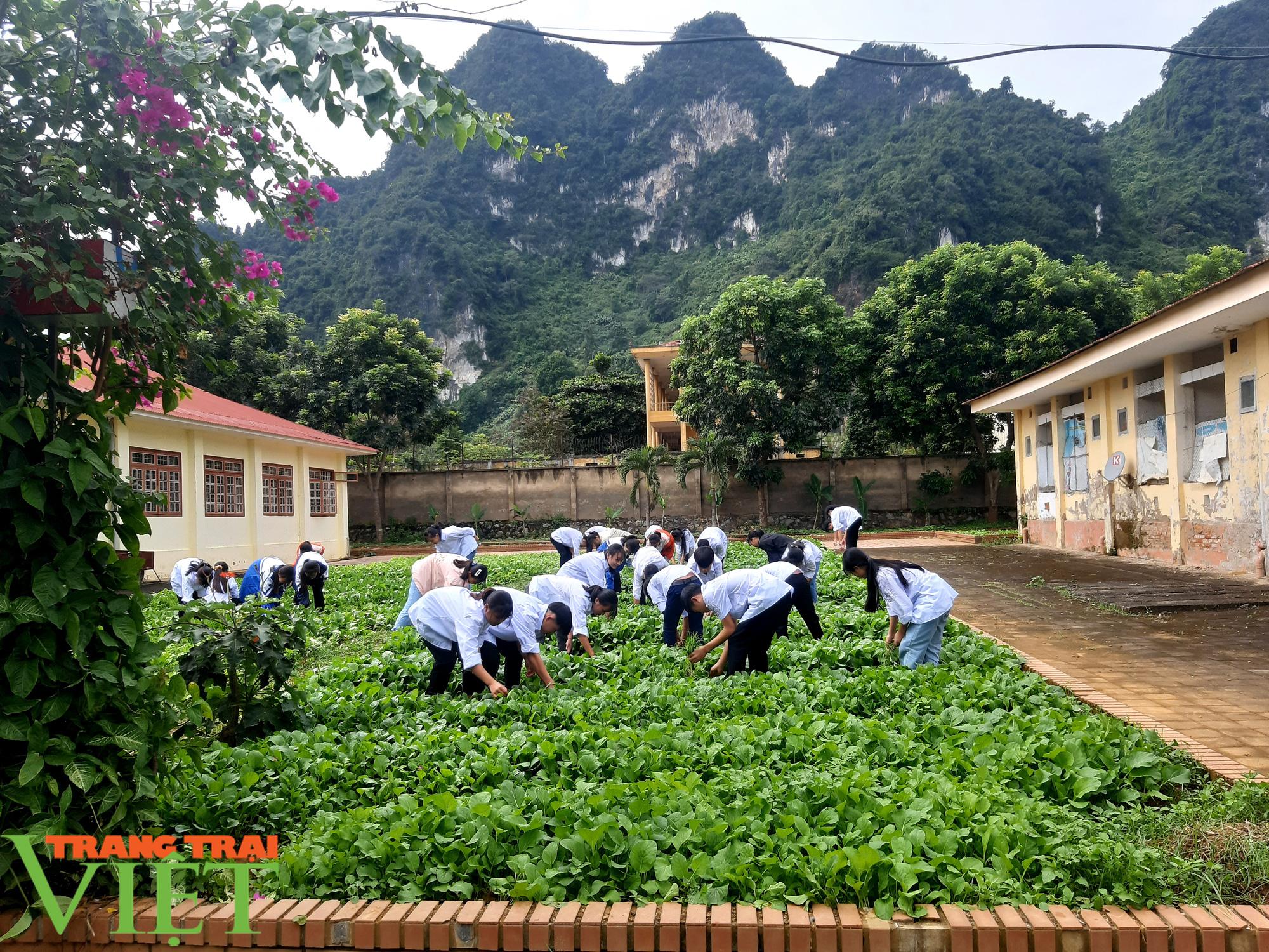 Trường PTDT Nội trú: Nơi chắp cánh ước mơ cho học sinh dân tộc - Ảnh 6.