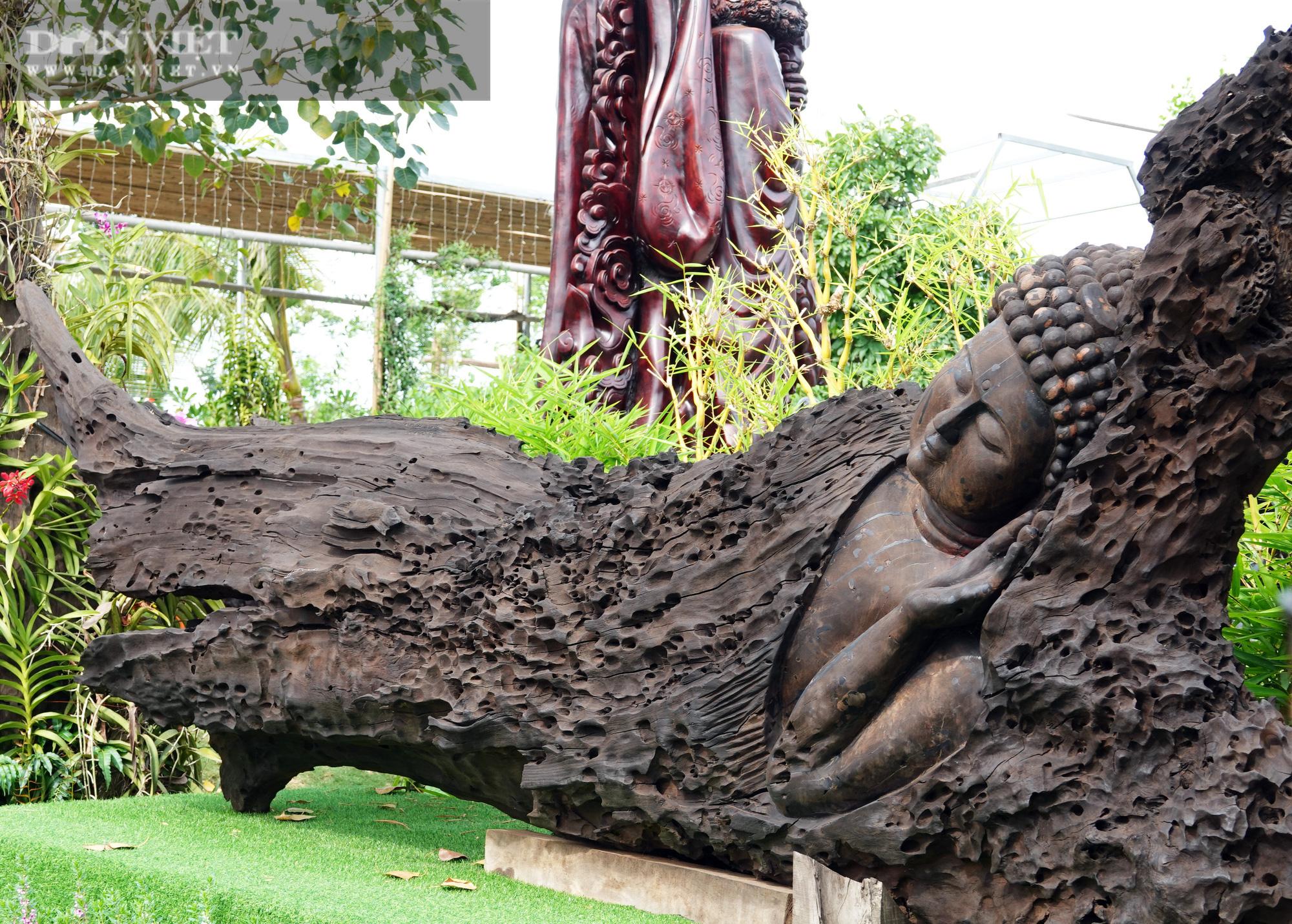 Bộ sưu tập tượng khủng làm từ những khúc gỗ quý hiếm bị chôn vùi dưới lòng sông hàng trăm năm  - Ảnh 1.