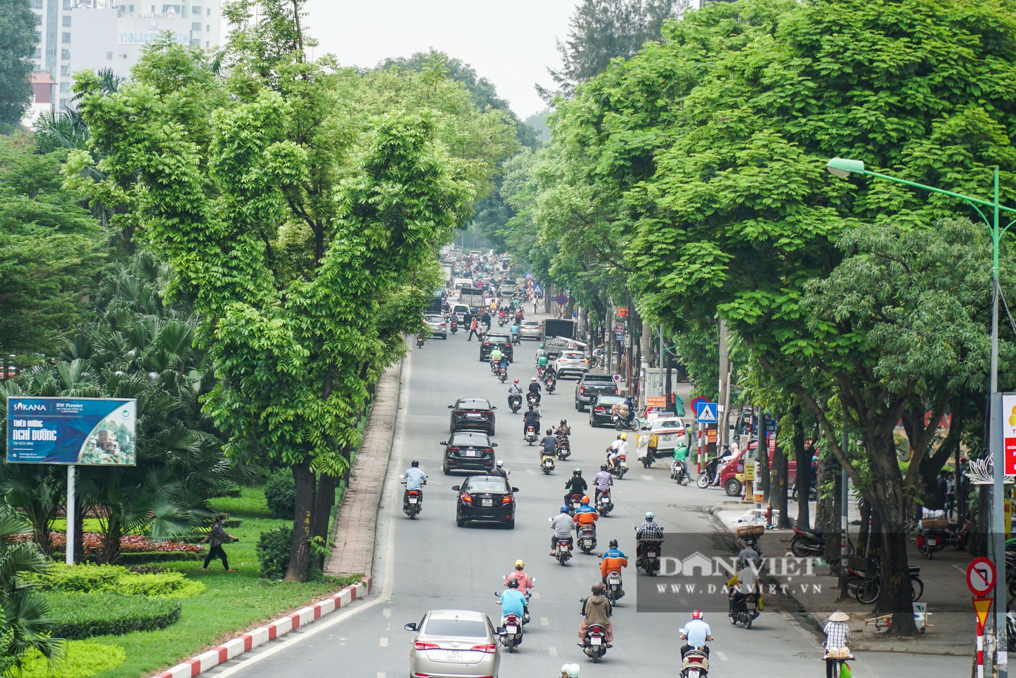Điểm mặt những tuyến đường nhiều tầng cây xanh ở Hà Nội - Ảnh 8.