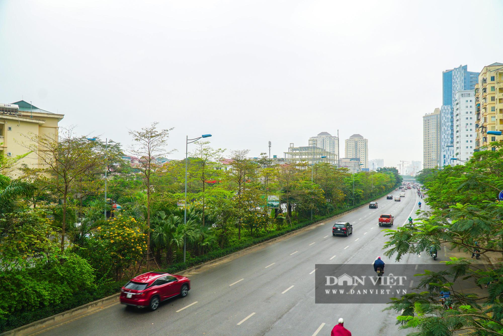 Điểm mặt những tuyến đường nhiều tầng cây xanh ở Hà Nội - Ảnh 7.