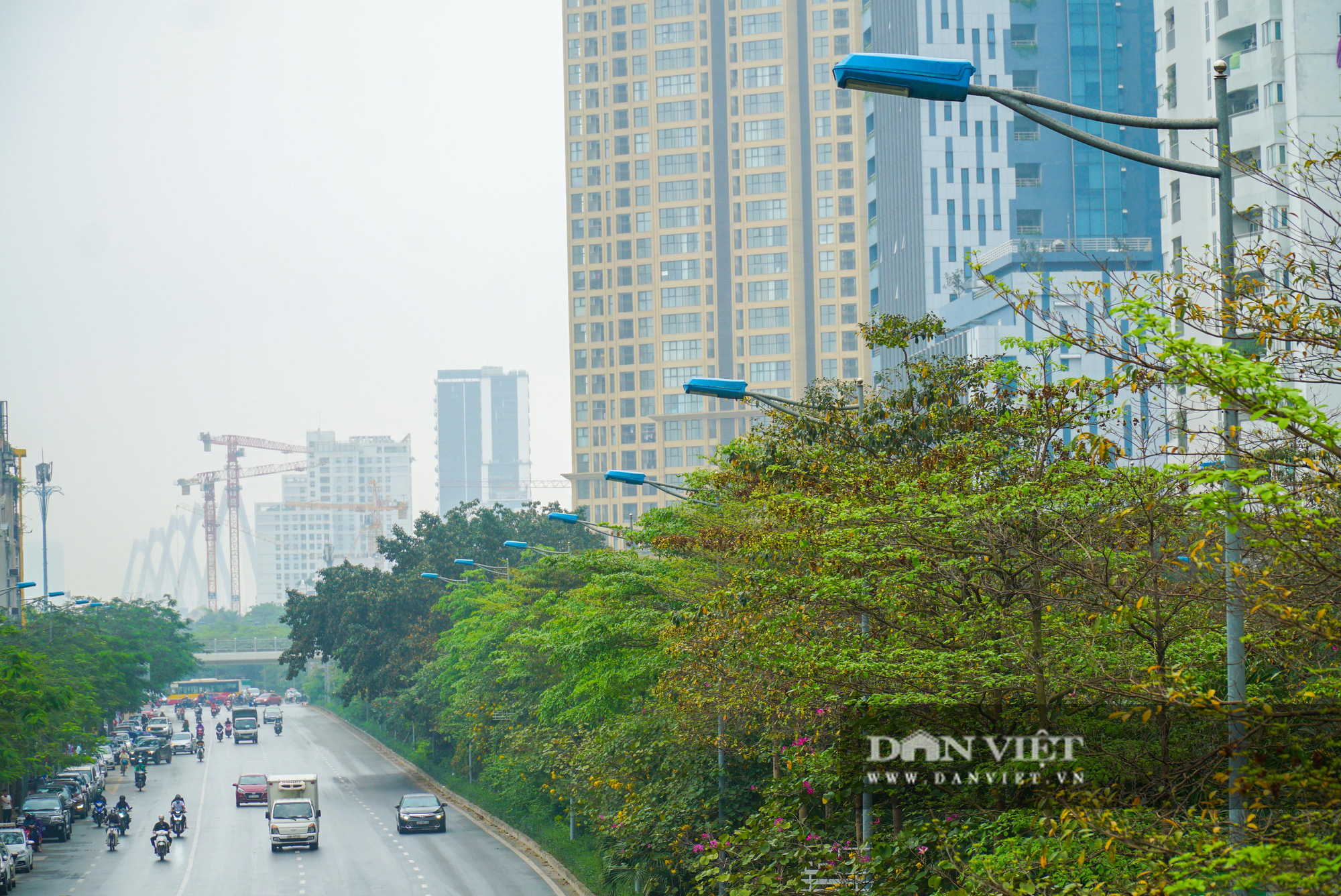 Điểm mặt những tuyến đường nhiều tầng cây xanh ở Hà Nội - Ảnh 6.