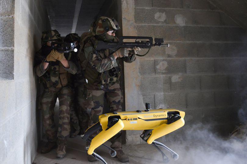 Quân đội Pháp đang thử nghiệm chó Robot trong chiến đấu - Ảnh 1.