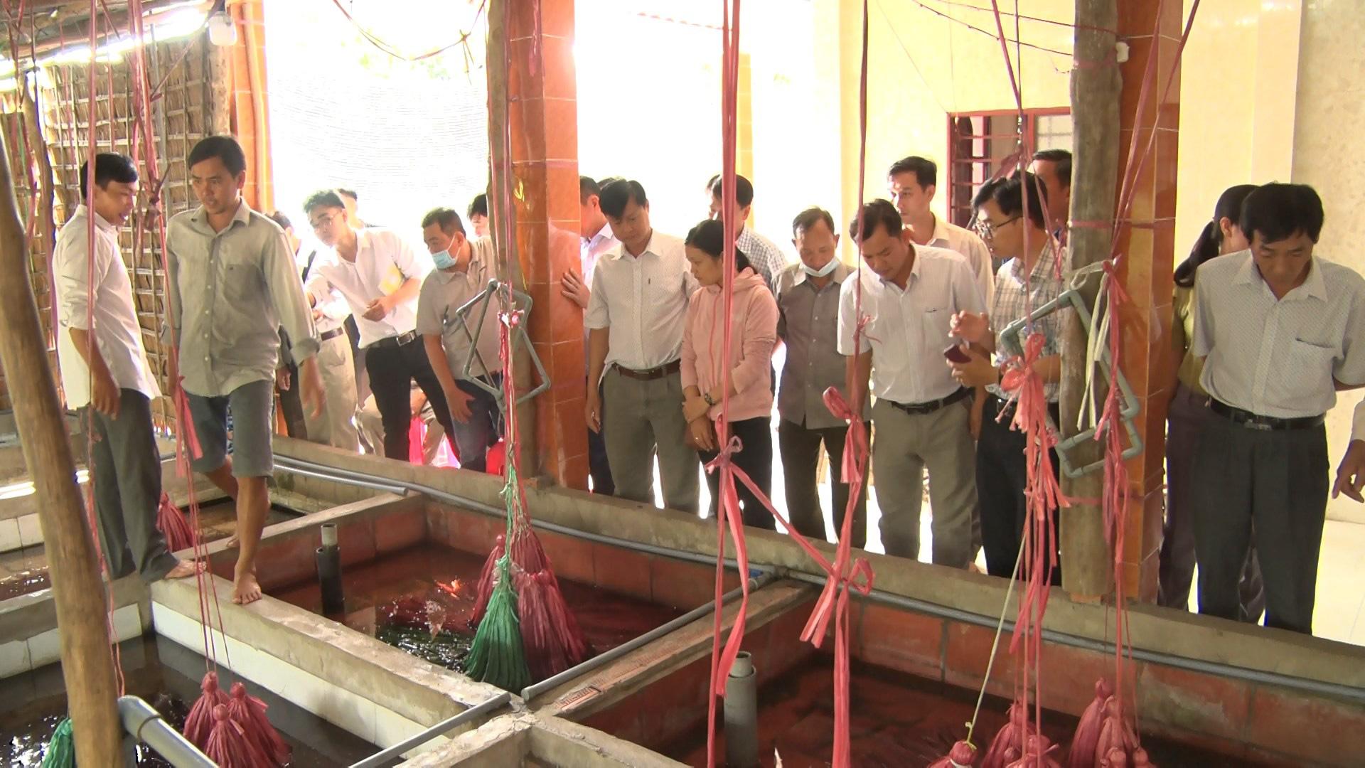 Tiền Giang: Một ông nông dân nuôi lươn không bùn ở trong nhà, bắt lên cả tấn, nhiều người kéo đến xem - Ảnh 1.