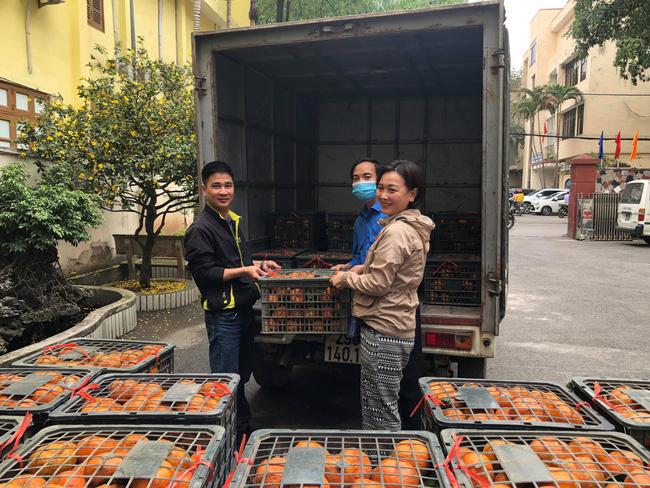 Giúp nông dân Hà Giang tiêu thụ gần 700 tấn cam sành - Ảnh 1.