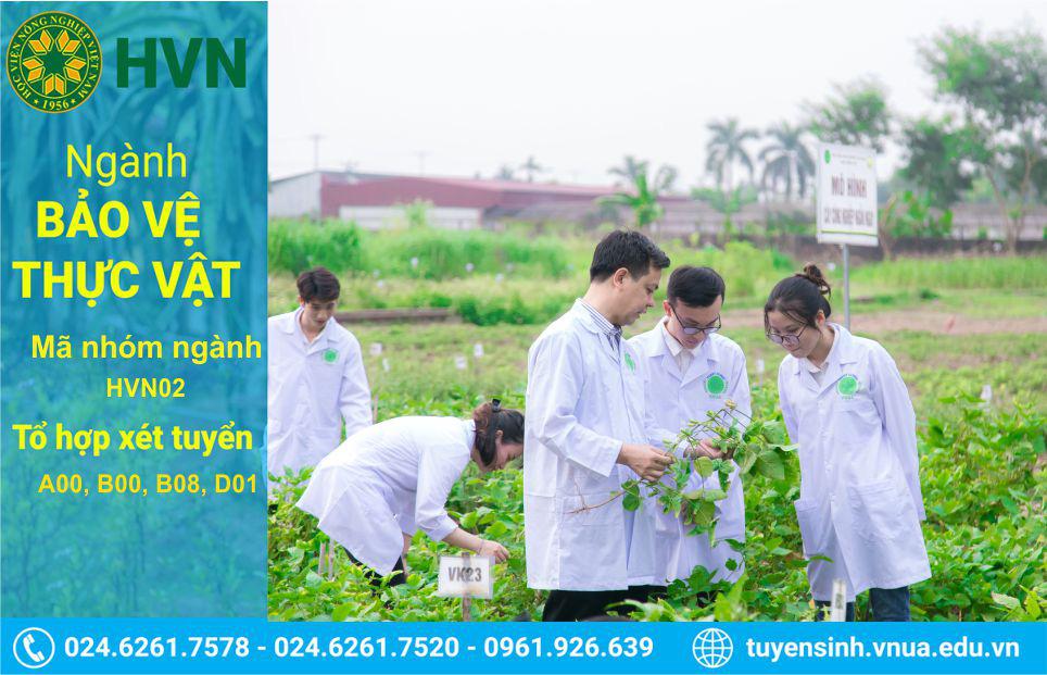 Học ngành này, sinh viên Học viện Nông nghiệp Việt Nam có cơ hội sang Nhật Bản thực hành - Ảnh 1.
