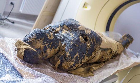 Phát hiện một xác ướp Ai Cập cổ đại đang mang thai 2.000 năm tuổi - Ảnh 1.