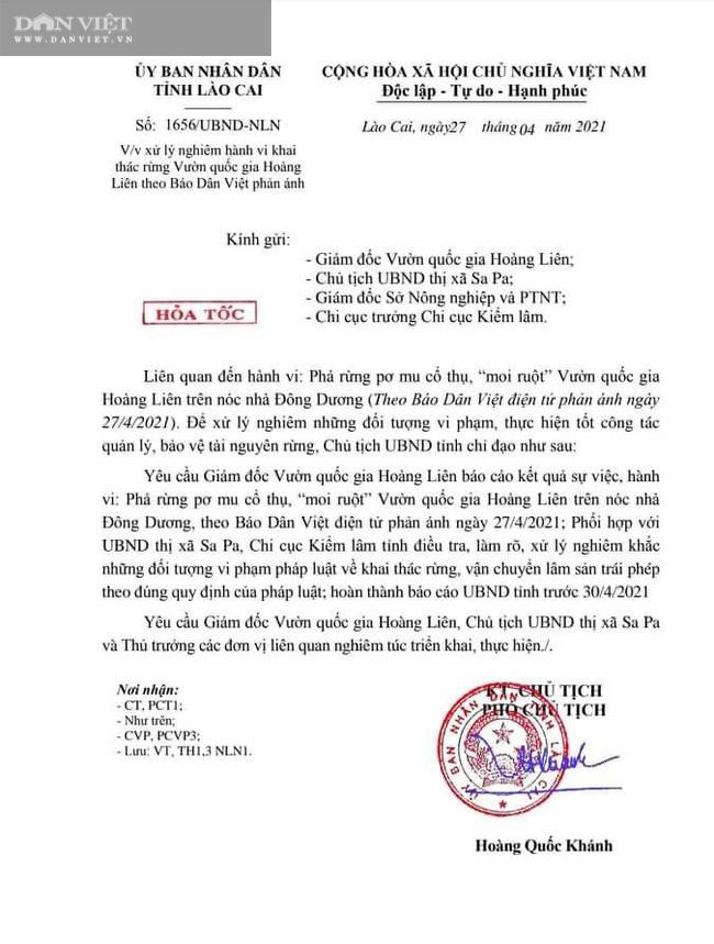 Tỉnh Lào Cai yêu cầu Kiểm điểm, làm rõ trách nhiệm cá nhân có liên quan vụ phá rừng pơ mu VQG Hoàng Liên - Ảnh 6.