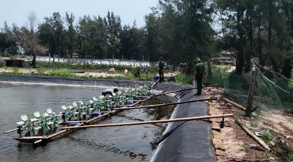 Quảng Trị: Nhà chức trách đang điều tra vụ 1 triệu con tôm nghi bị đầu độc bằng thuốc trừ sâu - Ảnh 1.