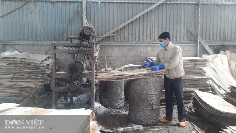 Thái Nguyên lão nông thu nhập hàng tỷ đồng từ nghề trồng rừng bóc gỗ - Ảnh 9.