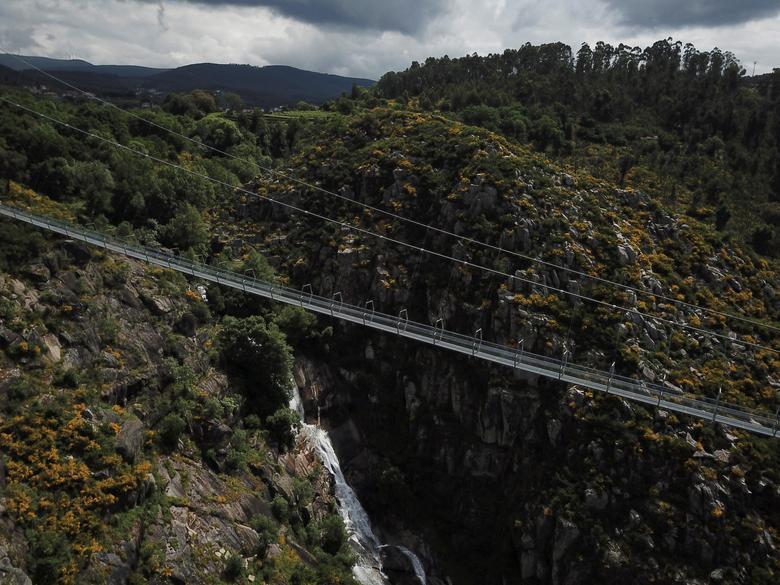 Khóc thét khi đi trên cây cầu bộ dành dài nhất thế giới - Ảnh 2.