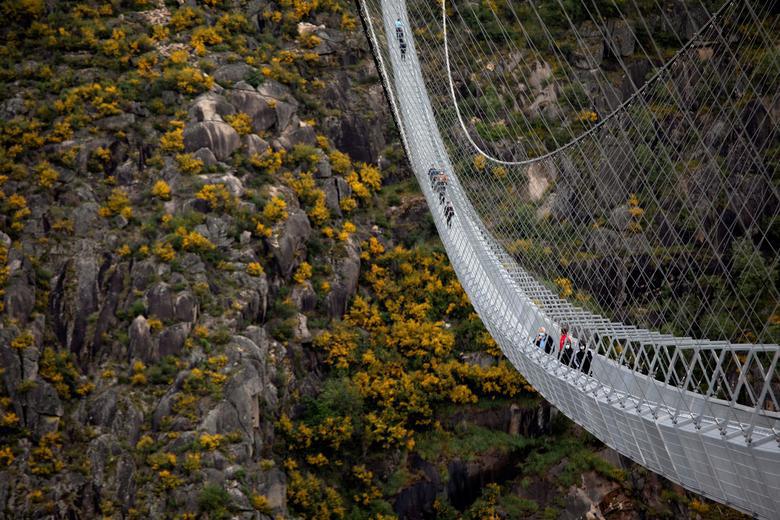 Khóc thét khi đi trên cây cầu bộ dành dài nhất thế giới - Ảnh 8.
