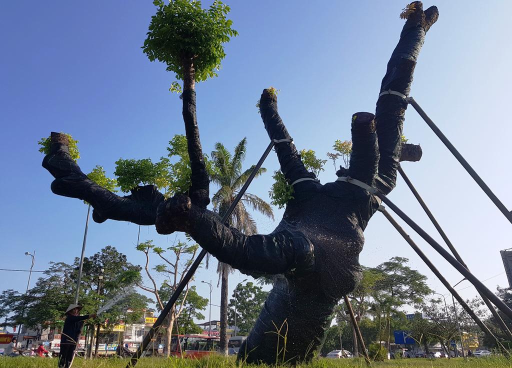 """Trên cả tuyệt vời, sau 5 tháng """"cấp cứu"""", cây xà cừ hơn 100 năm tuổi ở Huế đã mọc đầy chồi biếc - Ảnh 1."""