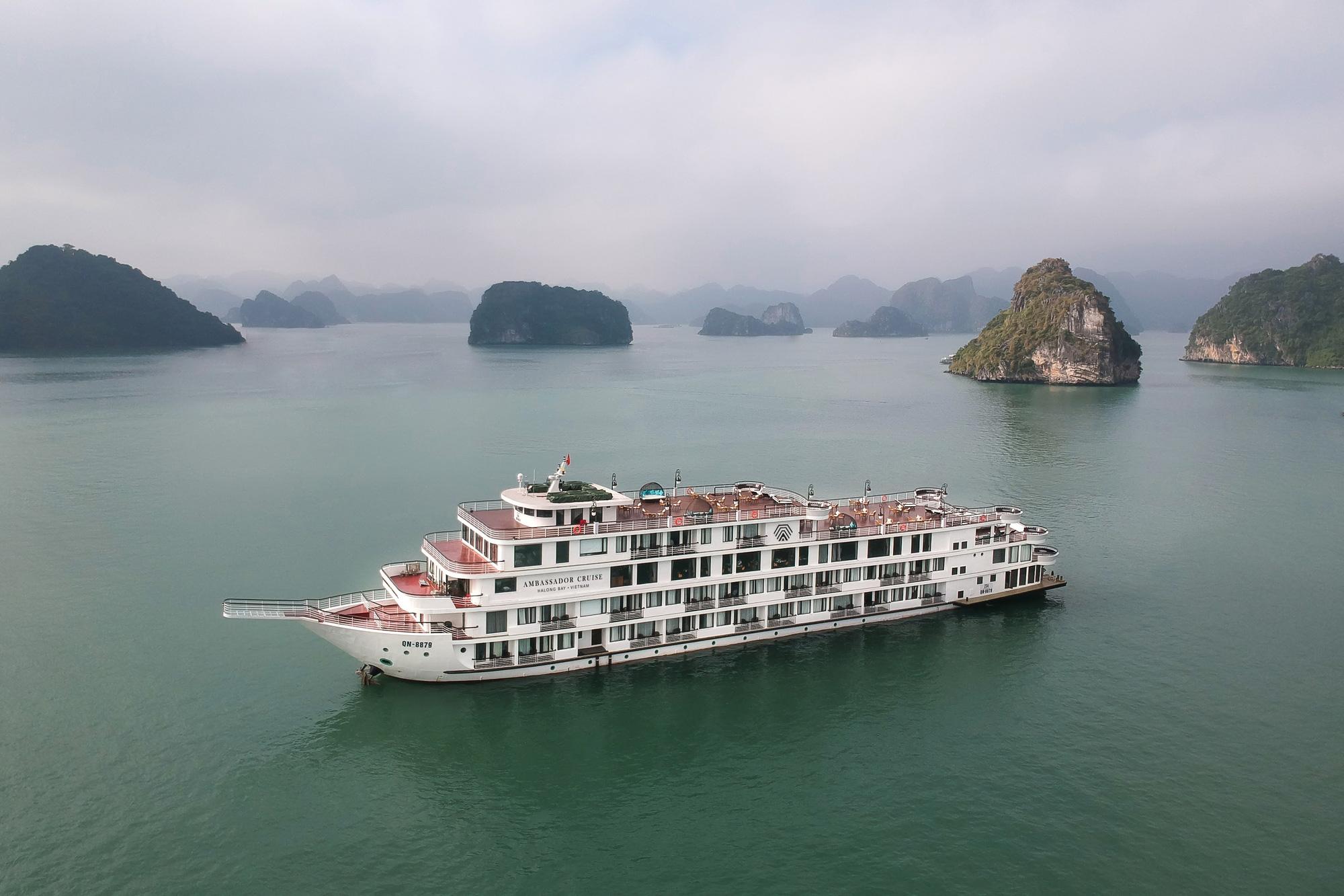 F1 phục vụ trên du thuyền, Quảng Ninh cách ly hơn 180 người - Ảnh 1.