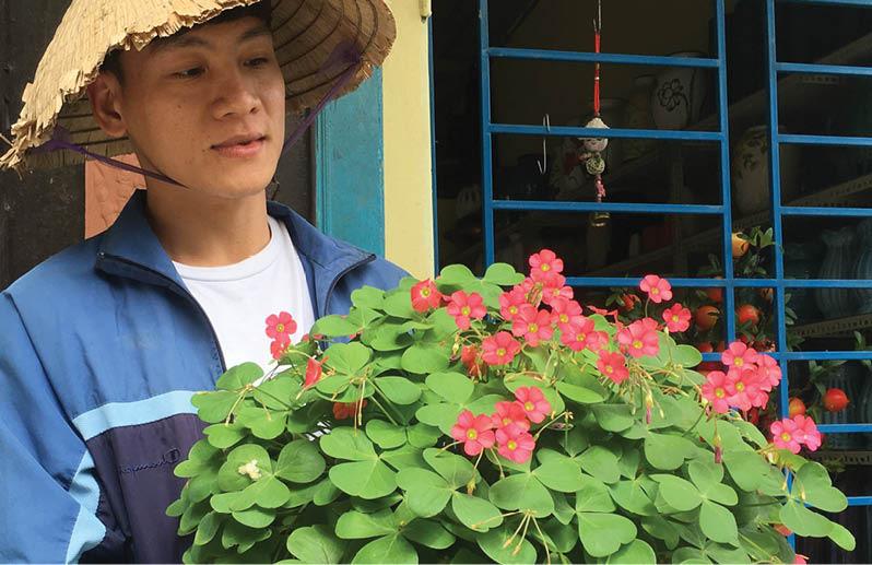 TT-Huế: Từ yêu hoa chua me đất, trai trẻ trồng 100 loài hoa lạ, ai ngờ vừa đẹp vừa bán ra tiền - Ảnh 1.