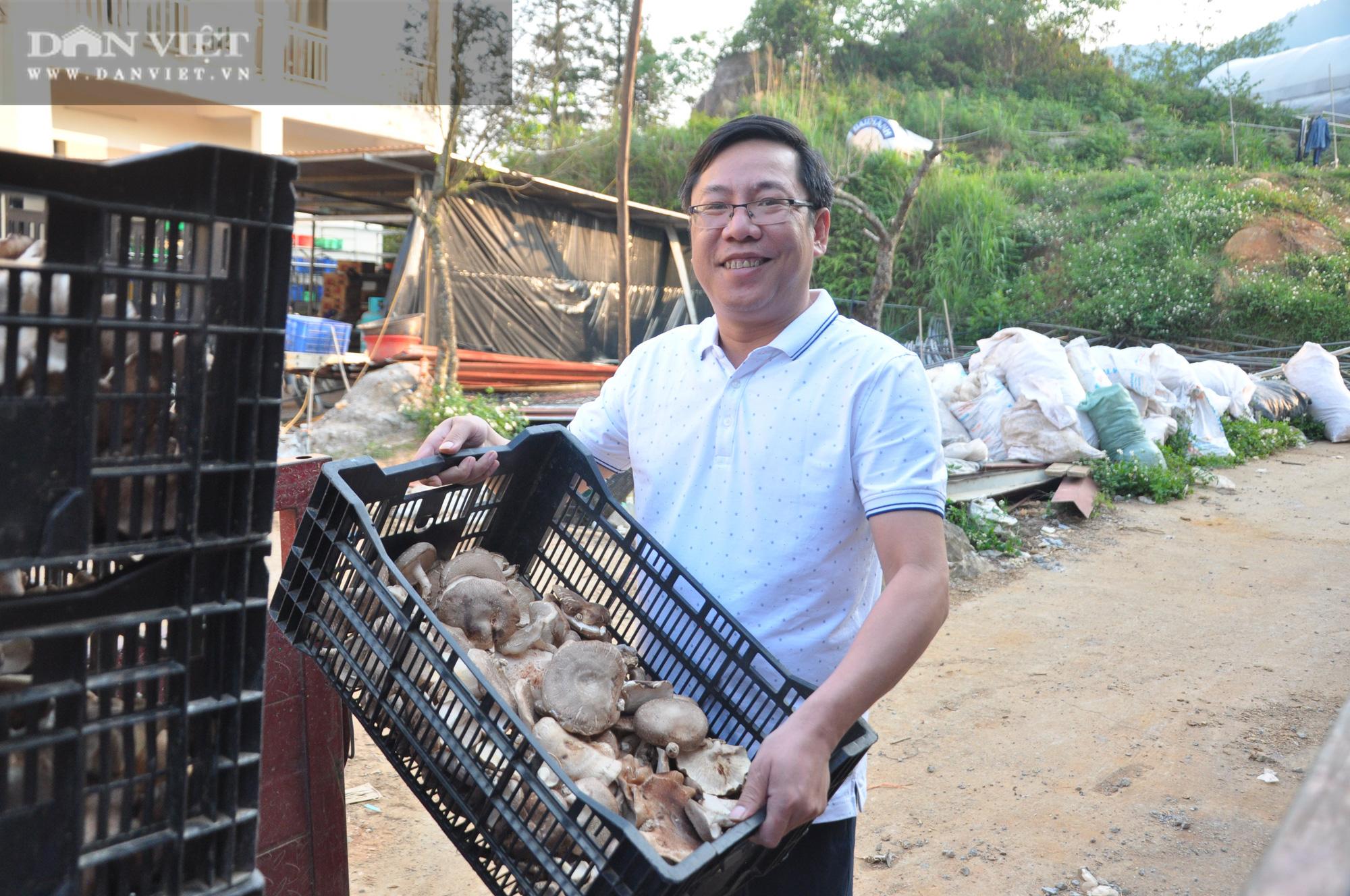 """""""Thuần phục"""" loài nấm rừng ở vùng """"4 mùa"""" xuất khẩu sang Nhật kiếm chục tỷ đồng/năm - Ảnh 4."""