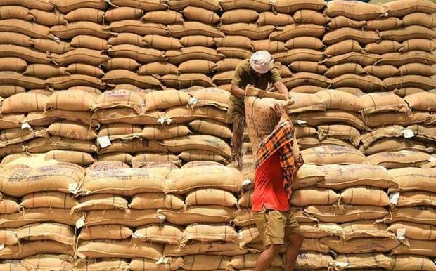 Giá gạo Ấn Độ chạm đáy vì dịch Covid-19 - Ảnh 1.