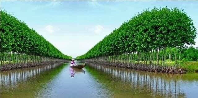 Cà Mau: Đề xuất tháo gỡ khó khăn cho ngành nông nghiệp - Ảnh 2.