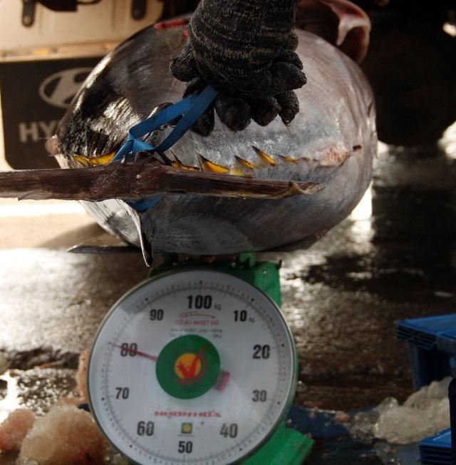 """Làng biển thu 1.000 tỷ đồng mỗi năm nhờ đi săn loài cá """"khủng"""" - Ảnh 7."""