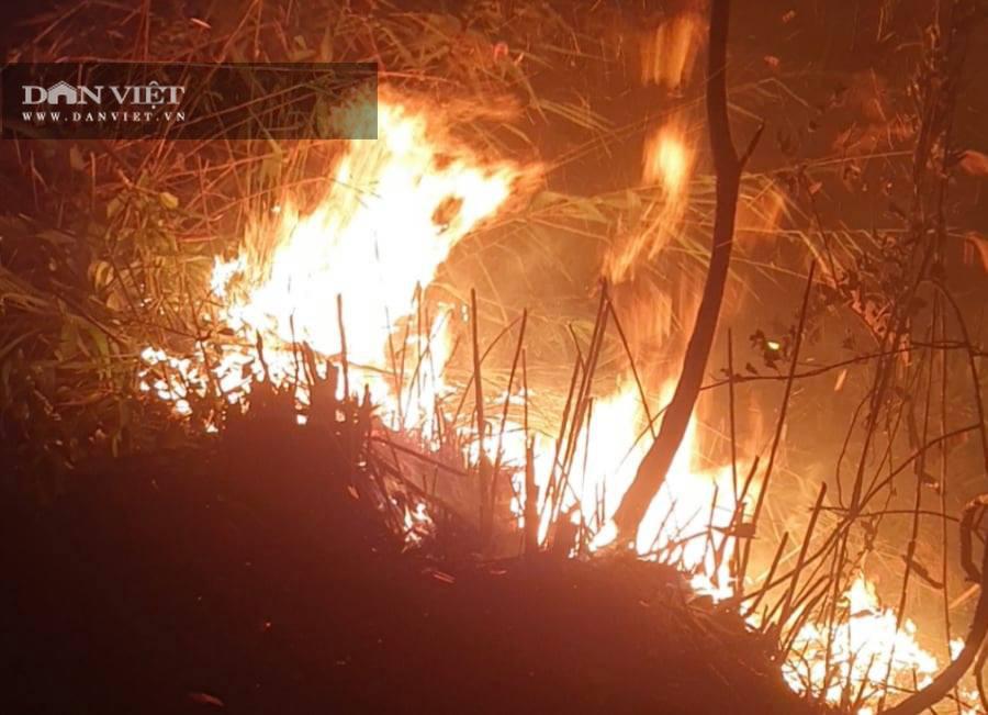 Bắc Kạn: Dập tắt đám cháy trong đêm, bảo đảm an đường điện cao thế - Ảnh 1.