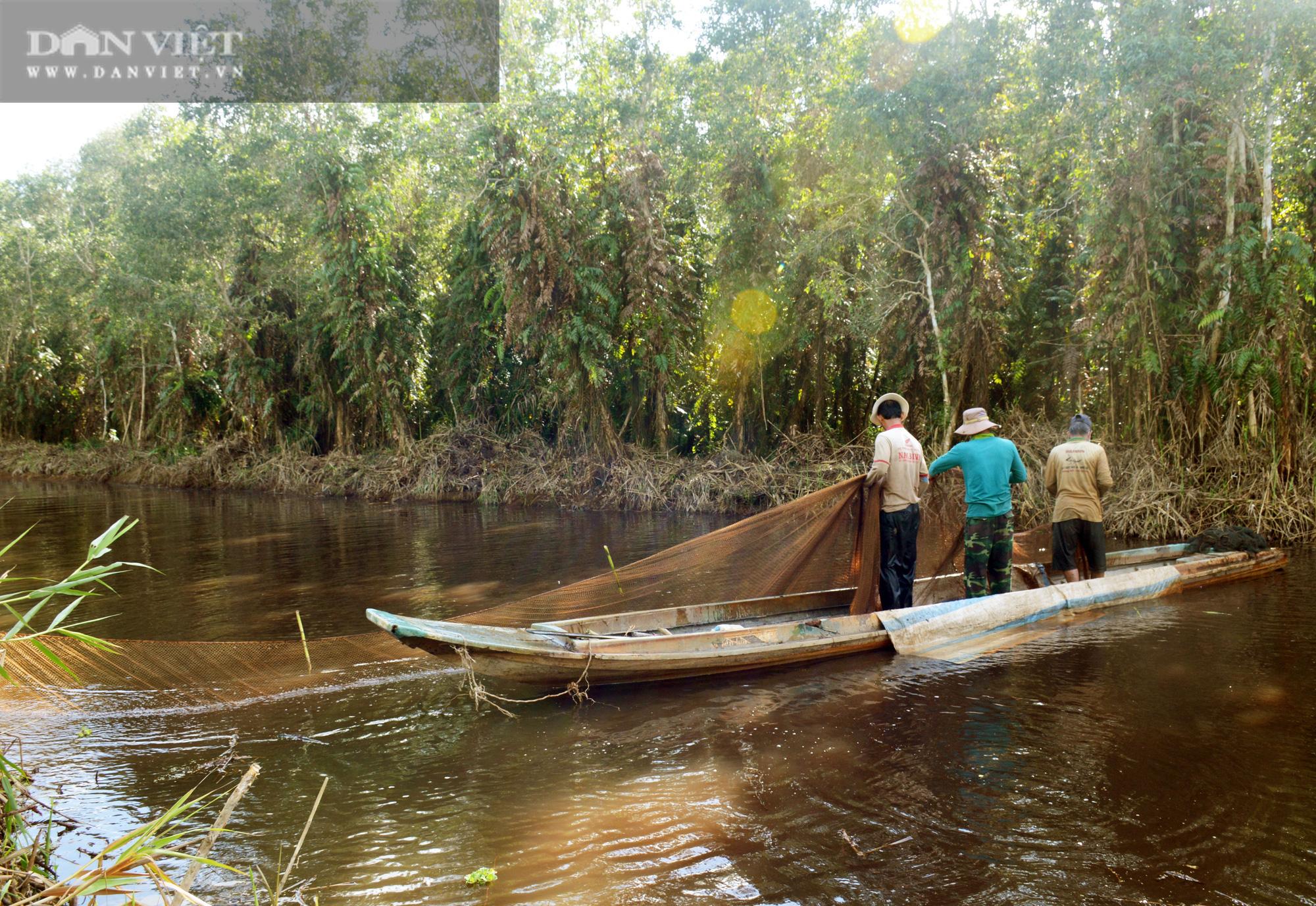 Về vườn quốc gia U Minh Hạ mục sở thị cảnh chụp đìa bắt hàng trăm kg cá đồng - Ảnh 4.
