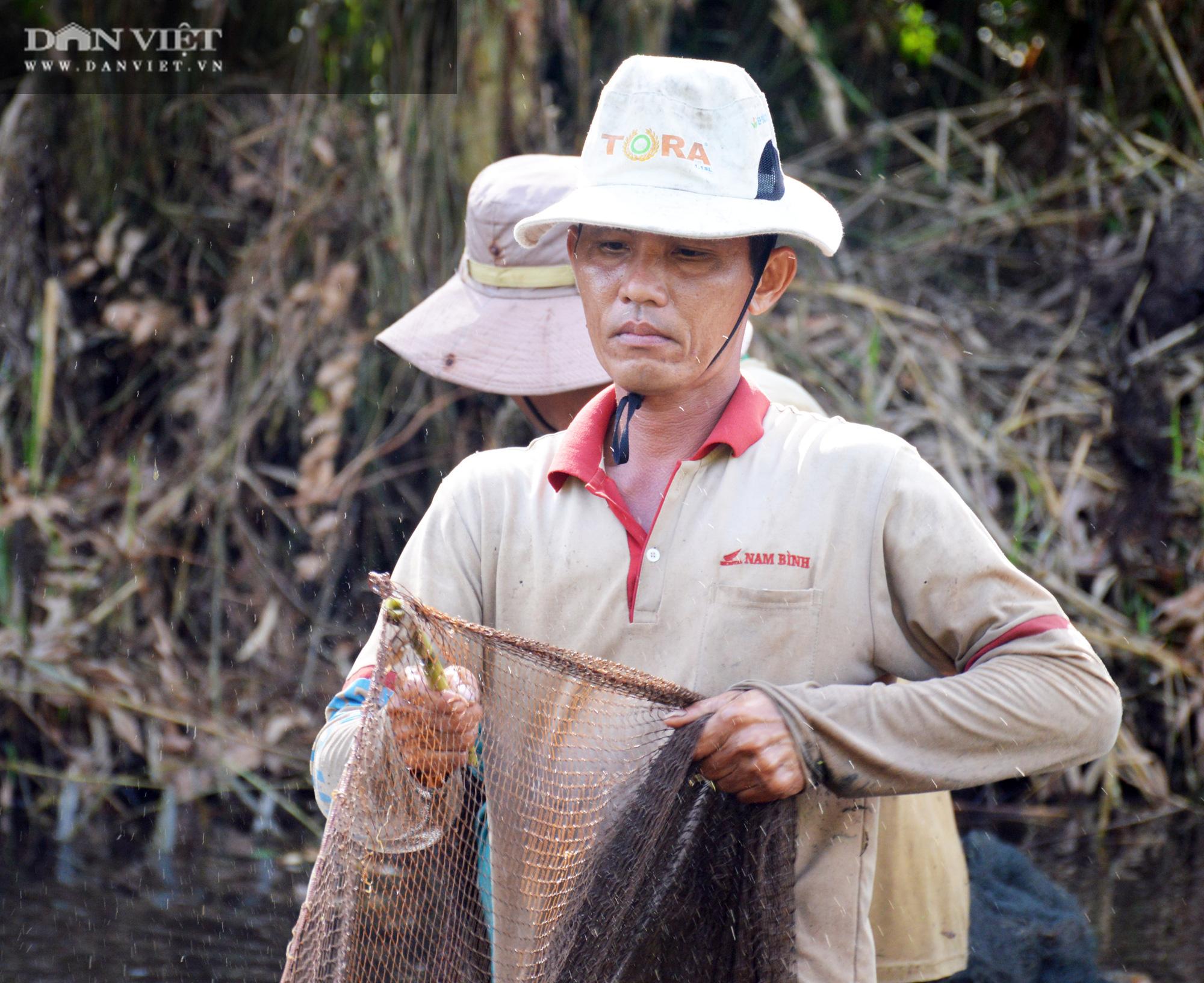 Về vườn quốc gia U Minh Hạ mục sở thị cảnh chụp đìa bắt hàng trăm kg cá đồng - Ảnh 7.