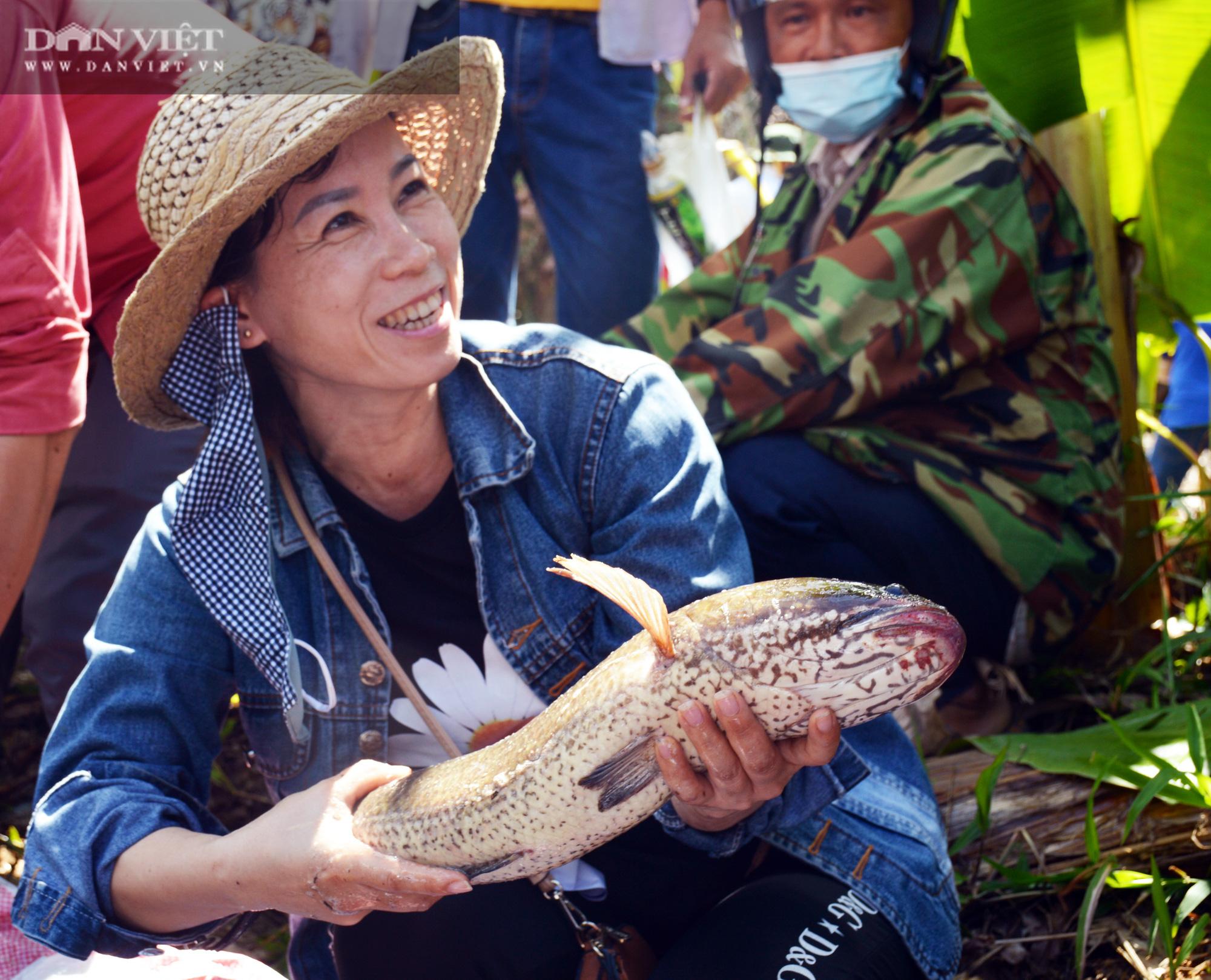 Về vườn quốc gia U Minh Hạ mục sở thị cảnh chụp đìa bắt hàng trăm kg cá đồng - Ảnh 20.