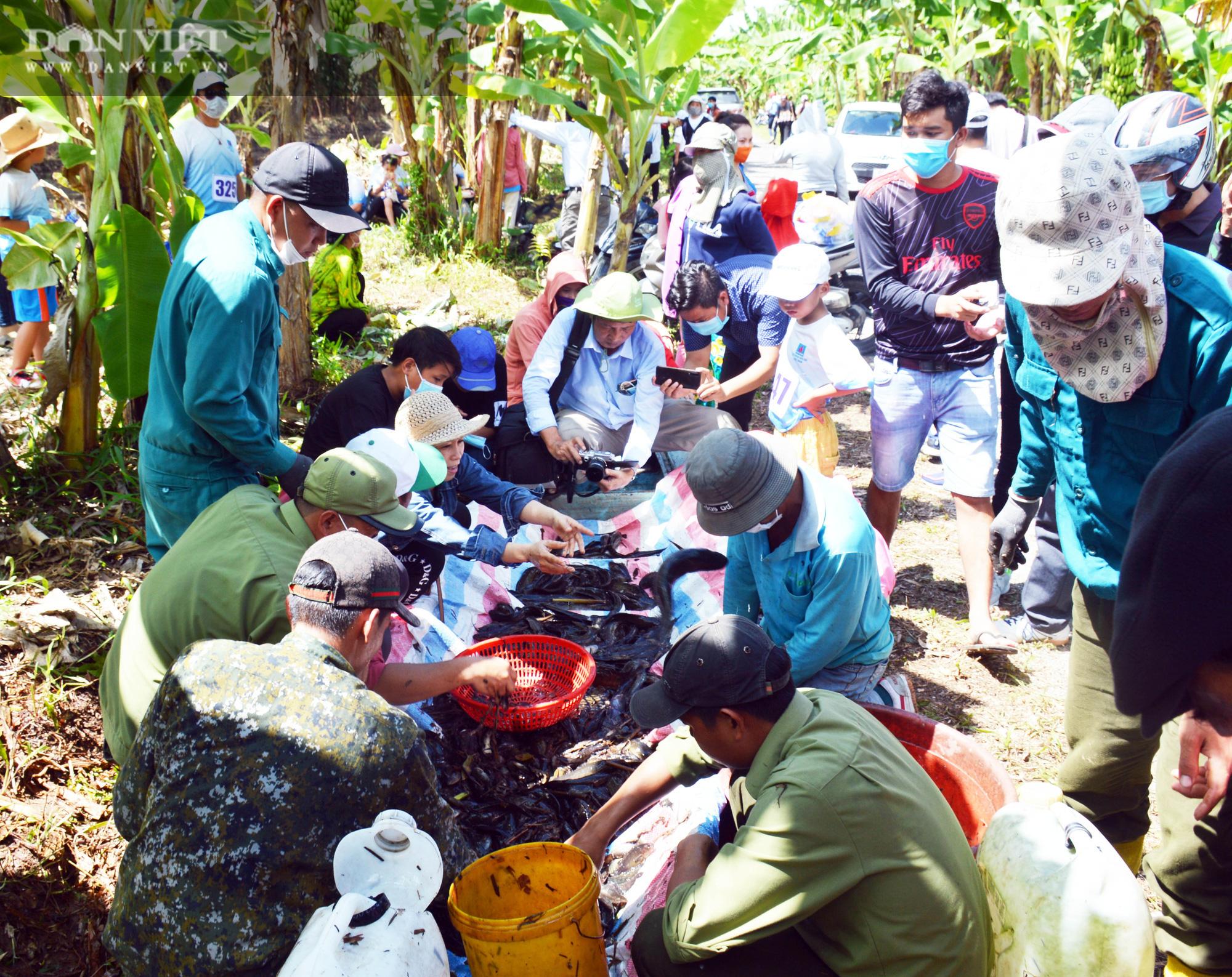 Về vườn quốc gia U Minh Hạ mục sở thị cảnh chụp đìa bắt hàng trăm kg cá đồng - Ảnh 3.