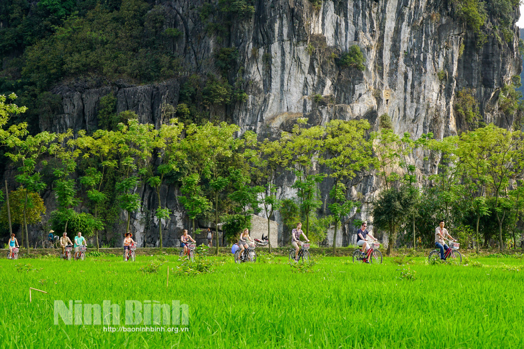 Nhiều nơi cũng có ruộng, núi non, nhưng vì sao khách Tây, khách ta cứ thích kéo về tỉnh này tát nước, bắt cá? - Ảnh 2.
