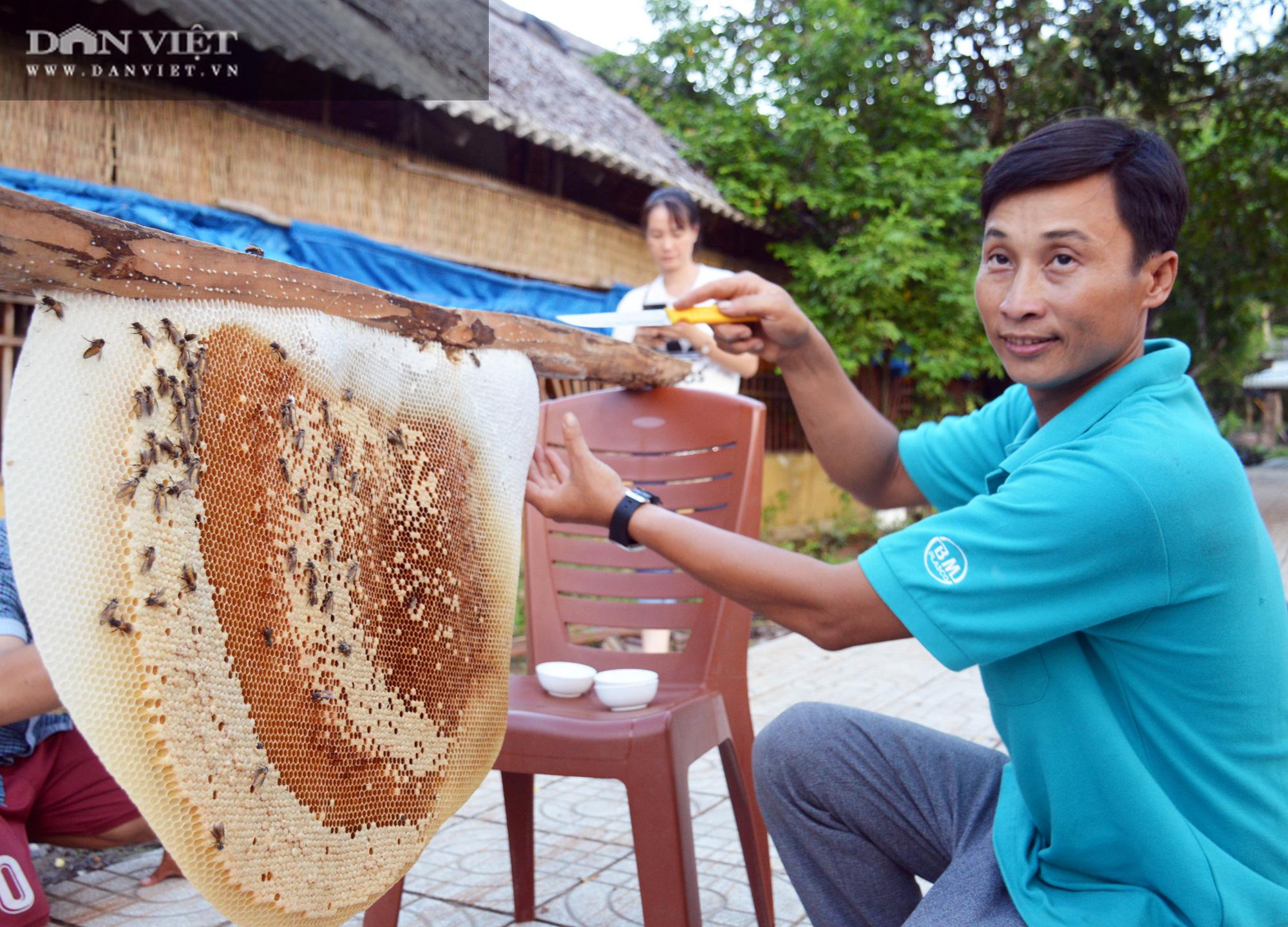 Về U Minh Hạ, lội rừng ăn ong lấy mật, thưởng thức vô số đặc sản trứ danh - Ảnh 11.