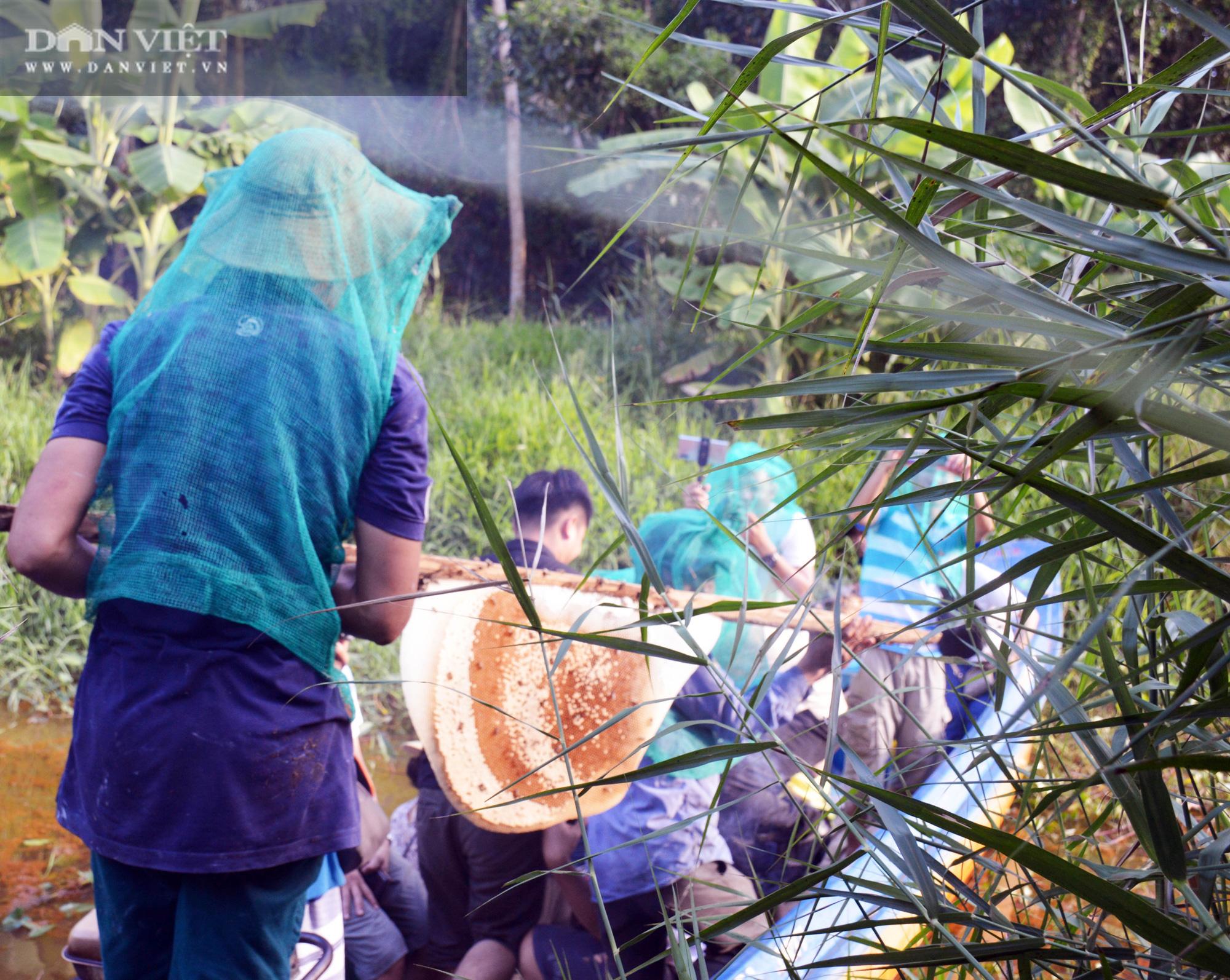 Về U Minh Hạ, lội rừng ăn ong lấy mật, thưởng thức vô số đặc sản trứ danh - Ảnh 9.