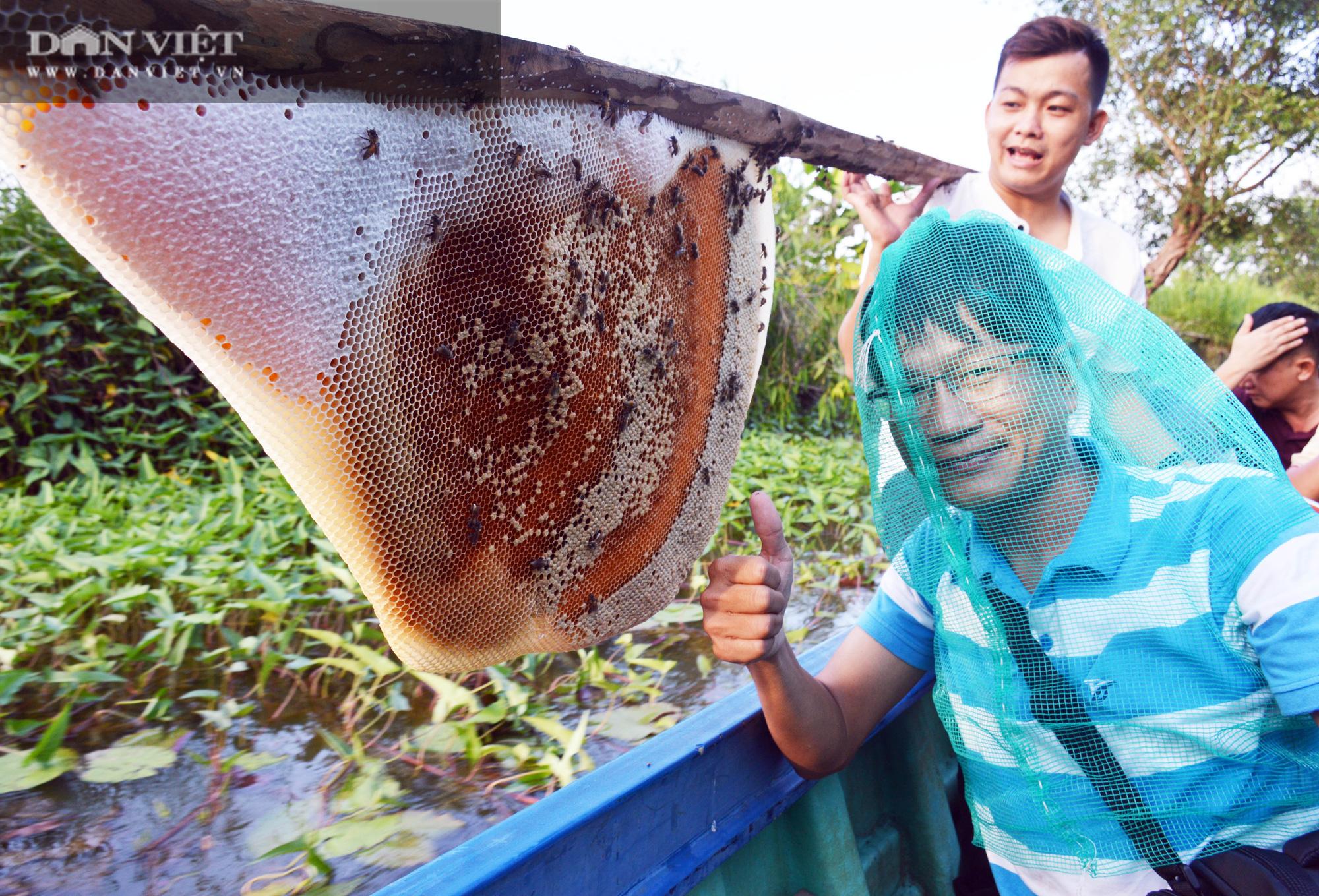 Về U Minh Hạ, lội rừng ăn ong lấy mật, thưởng thức vô số đặc sản trứ danh - Ảnh 10.