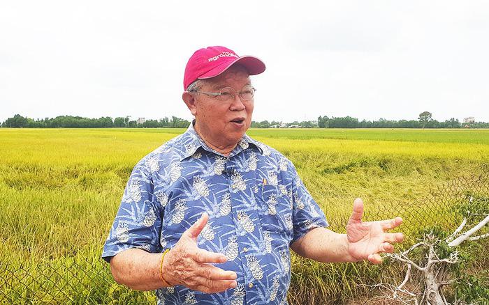 GS Võ Tòng Xuân: Bill Gate mà ở Việt Nam cũng khó giàu vì bản quyền tác giả còn lỏng lẻo - Ảnh 1.