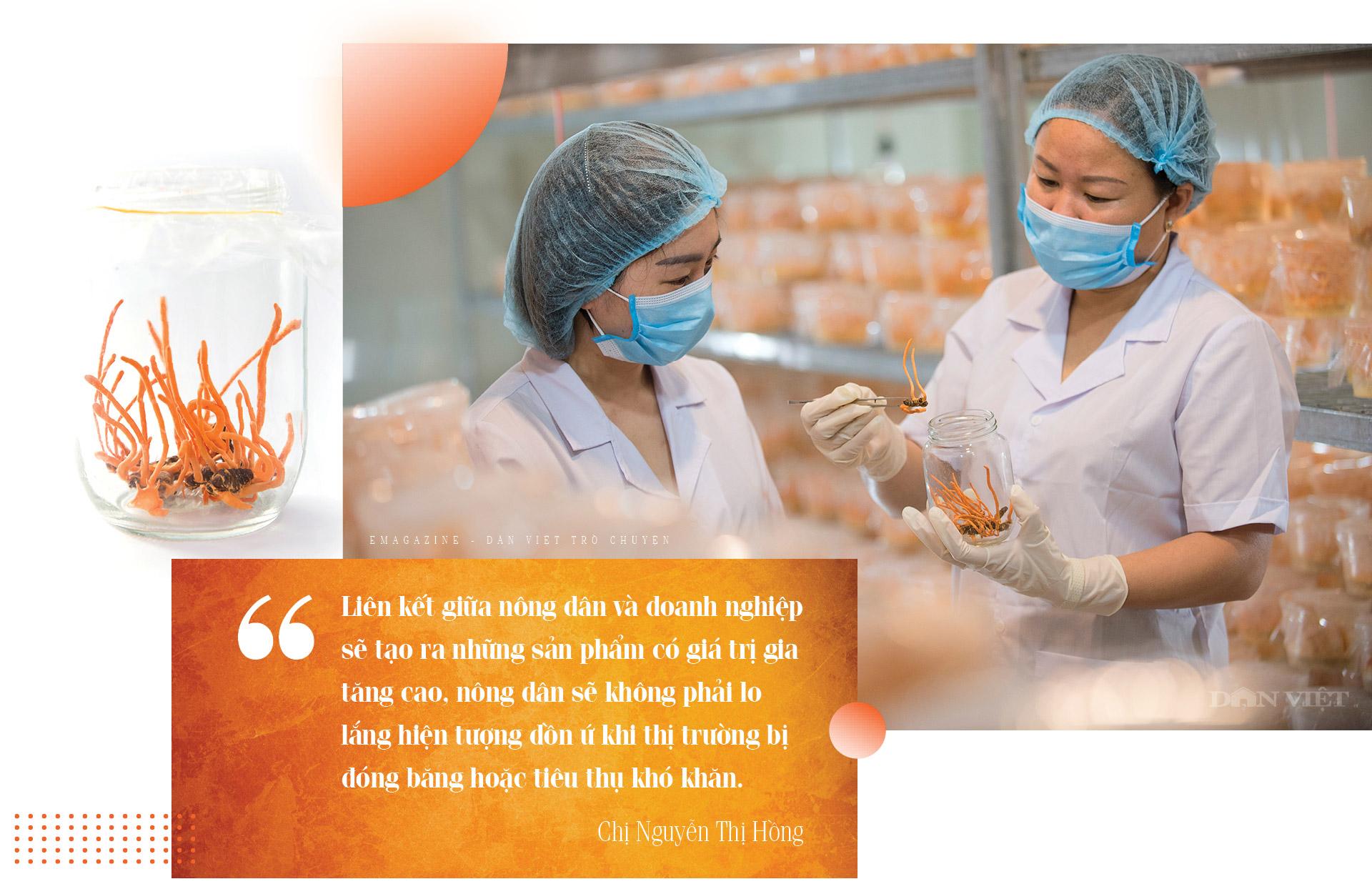 """Tỷ phú Nông dân Việt Nam xuất sắc 2021 Nguyễn Thị Hồng: Hành trình chinh phục  """"vàng mềm"""" siêu đắt đỏ  - Ảnh 16."""