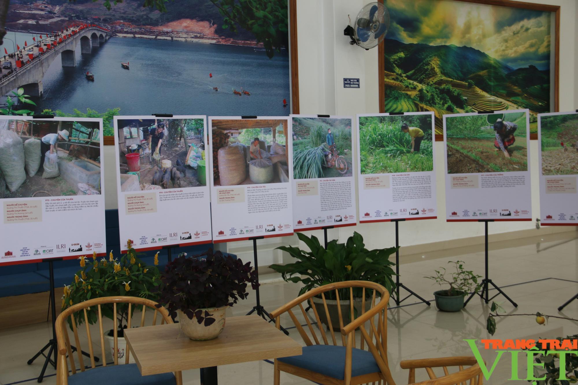 Khai mạc triển lãm chăn nuôi dưới góc nhìn của nghệ sĩ và nông dân  - Ảnh 4.