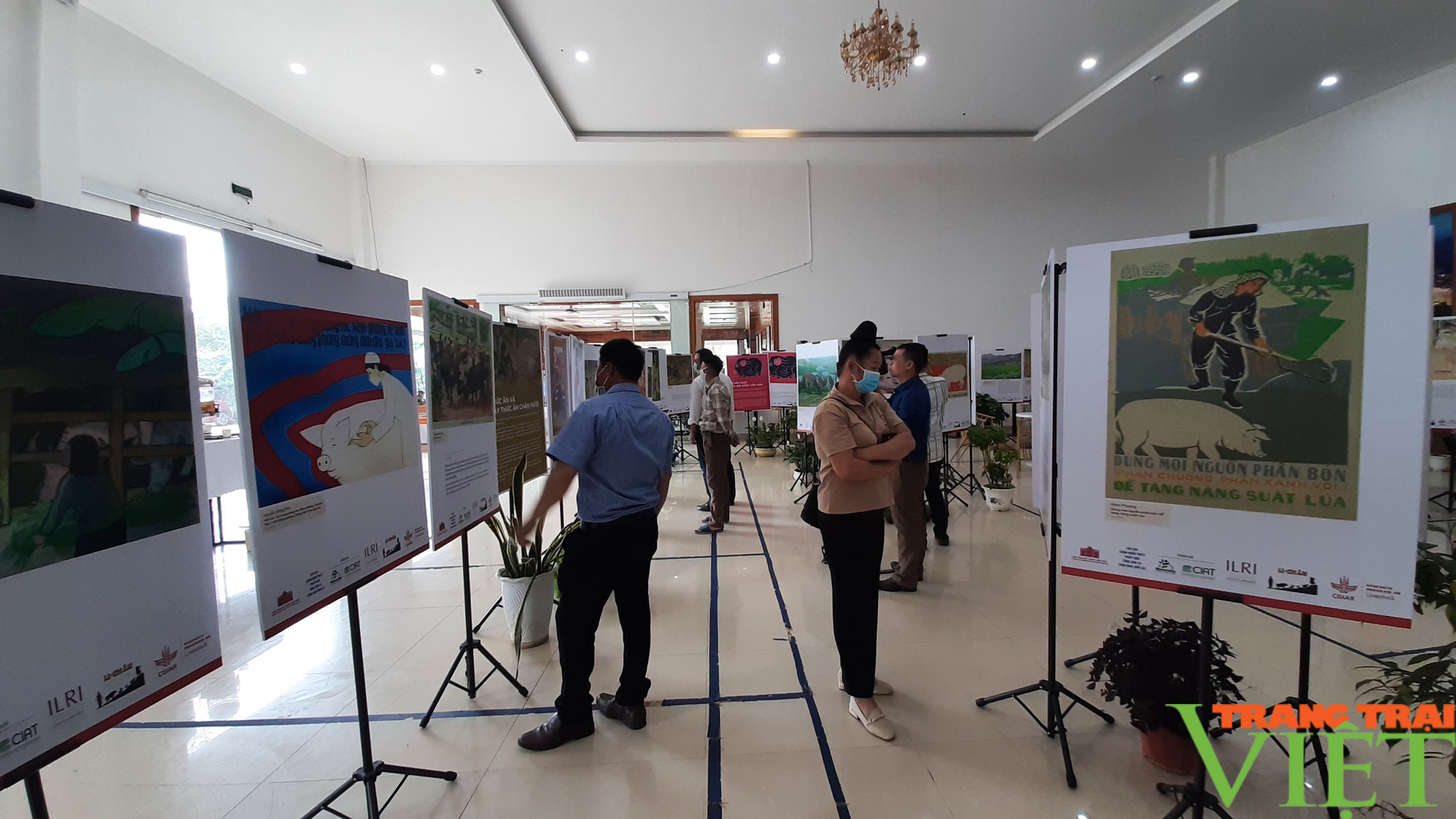 Khai mạc triển lãm chăn nuôi dưới góc nhìn của nghệ sĩ và nông dân  - Ảnh 7.