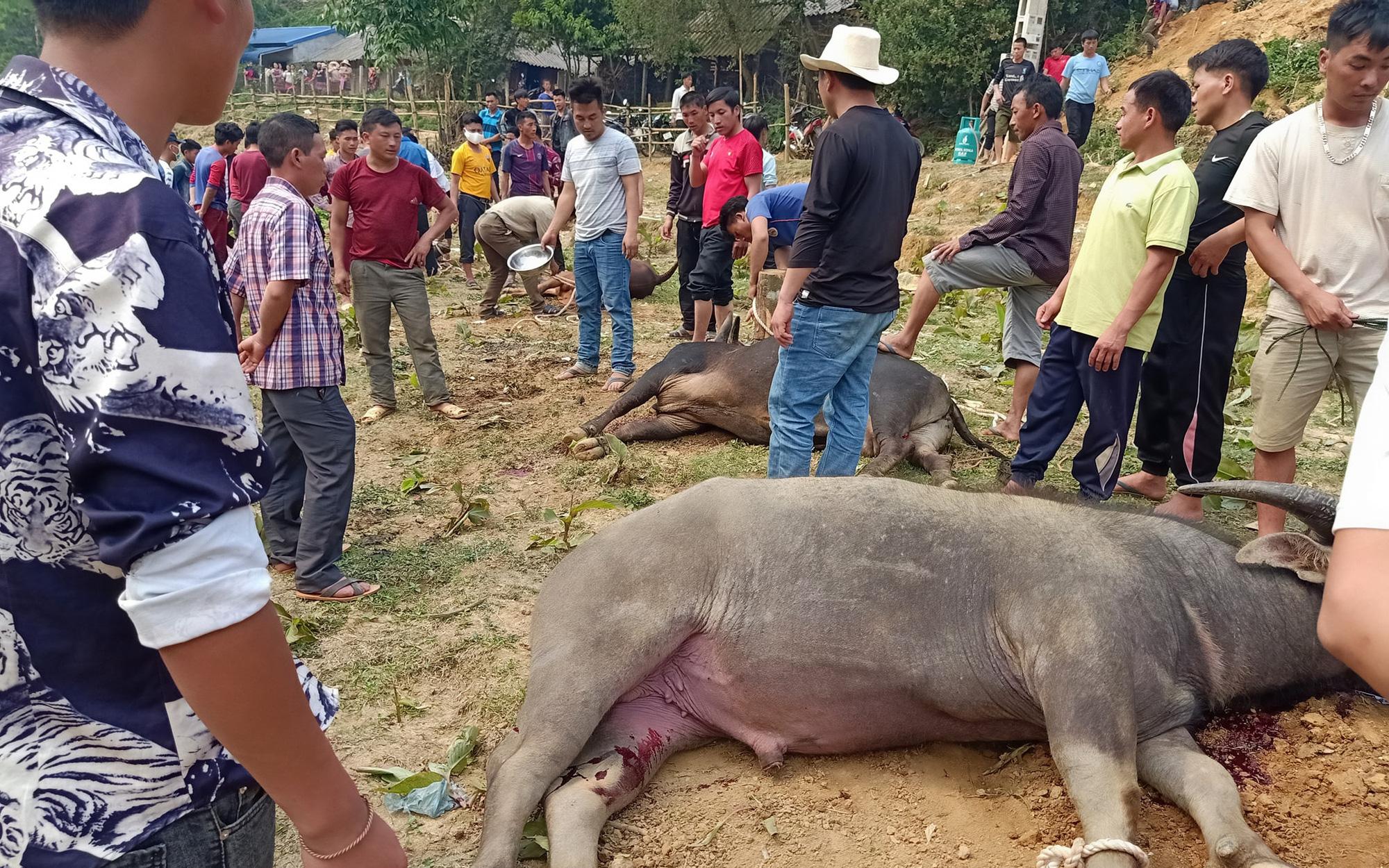 Cuộc cách mạng phong tục người Mông ở Sơn La: Bài 1: Treo người chết giữa nhà, thịt trâu ăn 7 ngày không hết