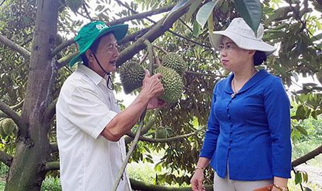 Phó Chủ tịch BCH Trung ương Hội NDVN Bùi Thị Thơm: Vận động, hỗ trợ nông dân phục hồi SXKD sau dịch bệnh - Ảnh 6.