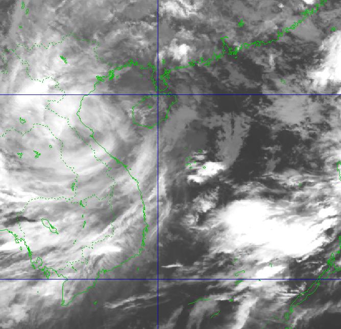 Tin nhanh: Bão số 8 chỉ cách Hà Tĩnh 200km, biển động rất mạnh, trưa chiều nay bão sẽ đổ bộ vào đất liền - Ảnh 1.