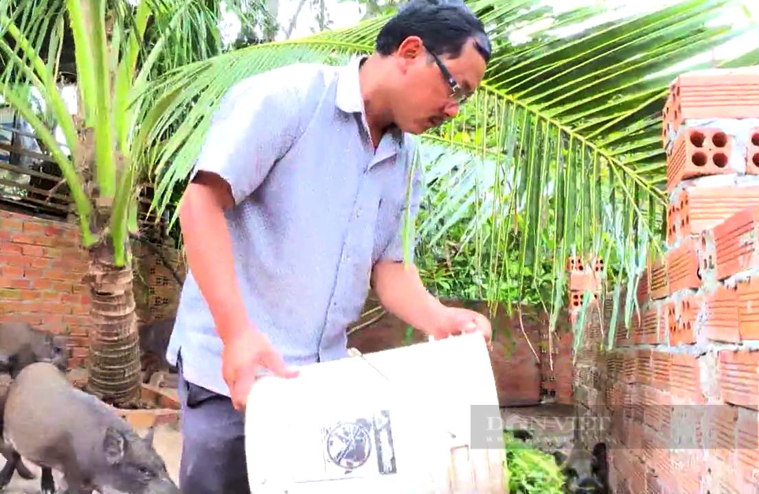 """Đồng Nai: Nuôi heo rừng bằng cách này """"ăn trọn"""" doanh thu, chẳng lo giá thức ăn chăn nuôi tăng nóng - Ảnh 4."""